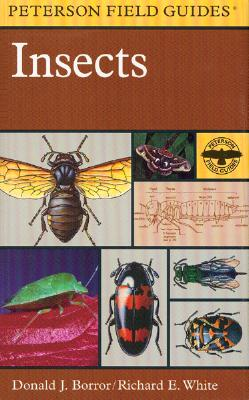 A Field Guide to Insects By Borror, Donald J./ White, Richard E.